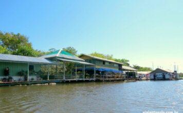 Pesca Pirarucu Manaus Flutuante | Viajante Solo