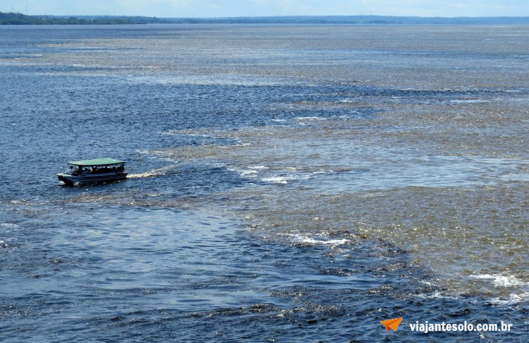 Manaus Encontro das Águas | Viajante Solo