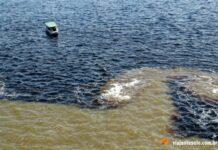 Manaus: o famoso encontro das águas dos Rios Negro e Solimões | Viajante Solo