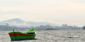 Turismo de Experiência explorando Florianópolis com todos os sentidos | Viajante Solo