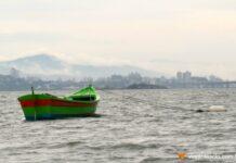 Turismo de Experiência explorando Florianópolis com todos os sentidos   Viajante Solo