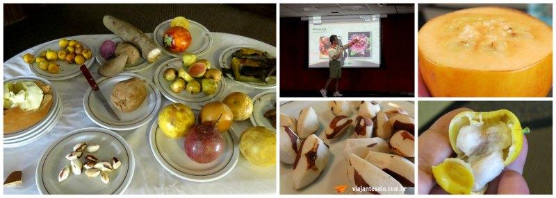 Iberostar Palestra Frutas da Amazonia | Viajante Solo