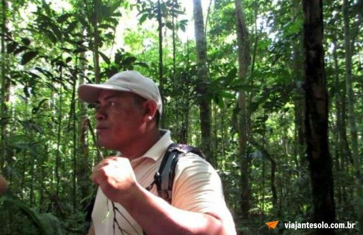 Caminhada na floresta Amazônica Timbo | Viajante Solo