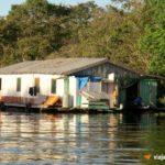 Lago Janauari Casa Ribeirinhos   Viajante Solo
