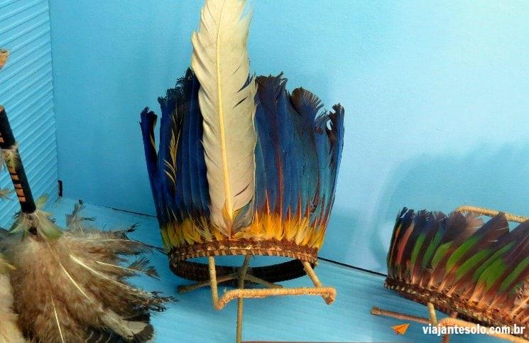 Roteiro Manaus Museu do Indio | Viajante Solo