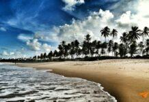 Iberostar Praia do Forte Praia | Viajante Solo