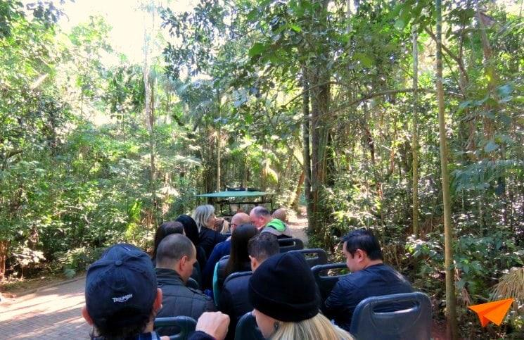 Macuco Safari Trilha de Carro Elétrico