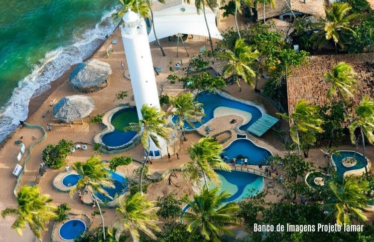 Projeto Tamar Praia do Forte Vista Aérea-min
