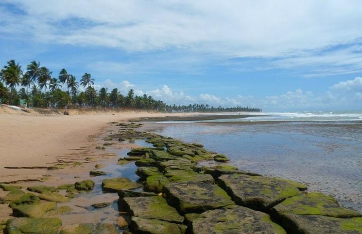 Viajar Sozinha para a Praia do Forte Praia Maré Baixa