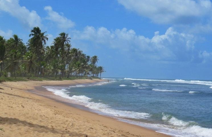 Viajar Sozinha para a Praia do Forte Praia do Lord