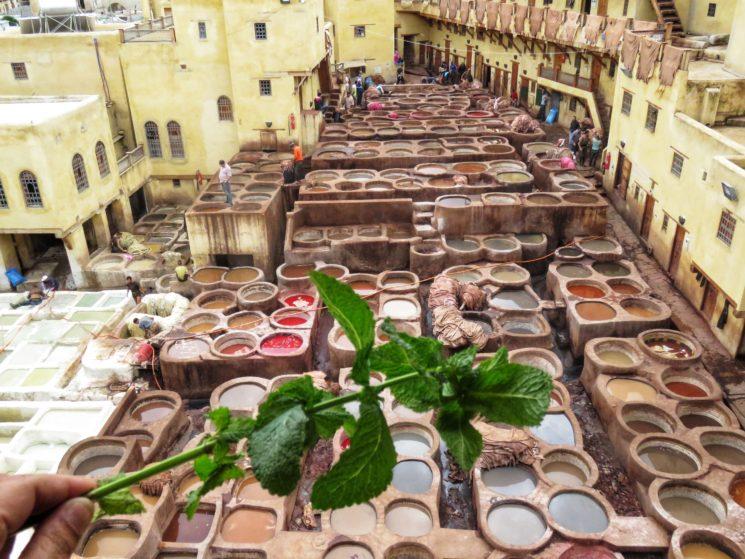 Roteiro no Marrocos Fez Tannery Chouara