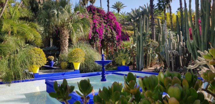 Roteiro no Marrocos Jardin Majorelle