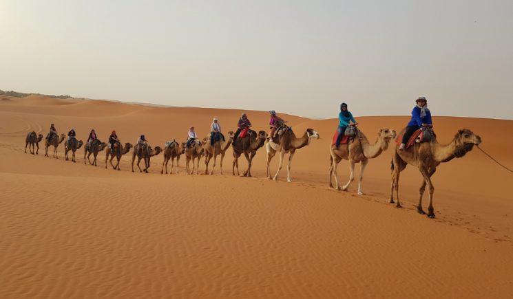 Viagem para Mulheres com Denise Tonin Marrocos Merzouga