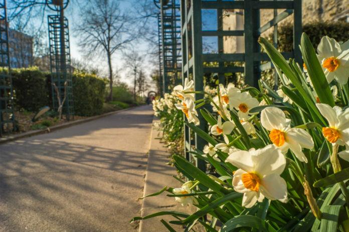 Passeios Gratuitos em Paris Explorar o Promenade Plantee