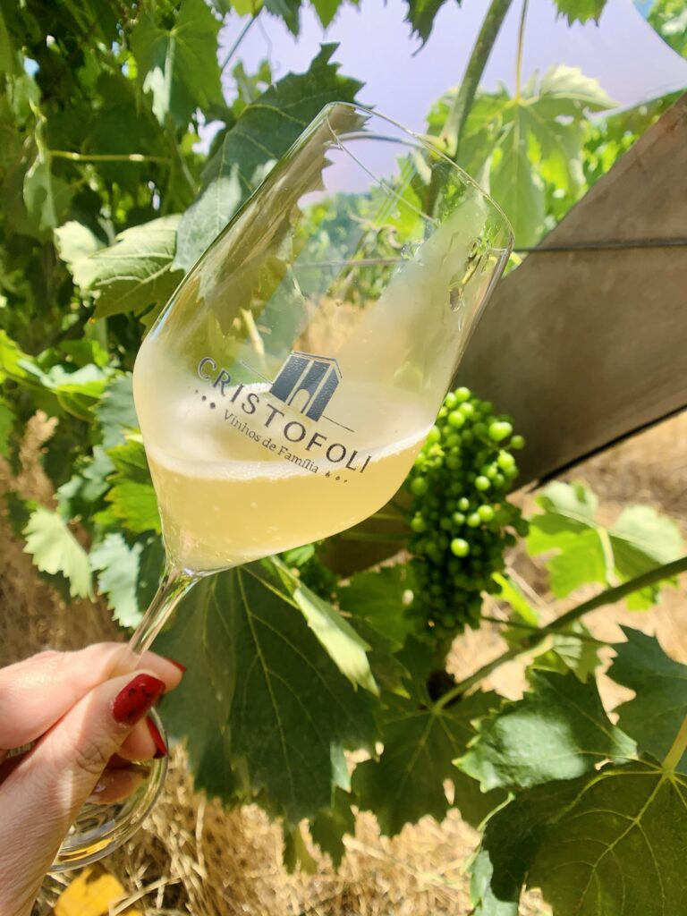 Cristofoli Vinhos Espumante