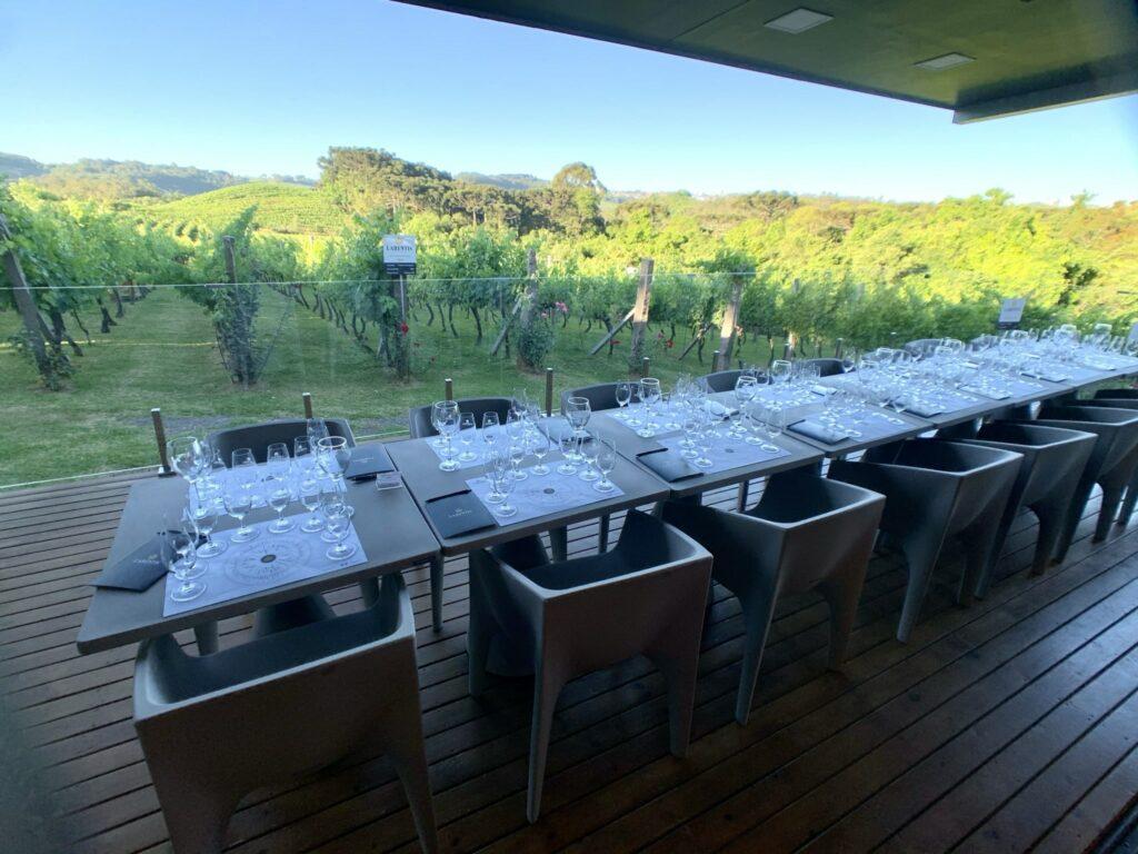 Vinhos Larentis Mesa Degustação Premium