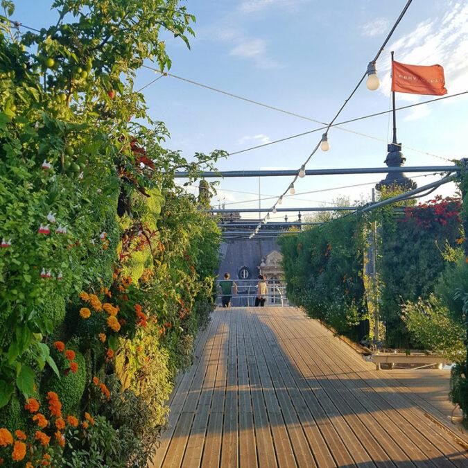 Galerias Lafayette Telhados Sustentáveis