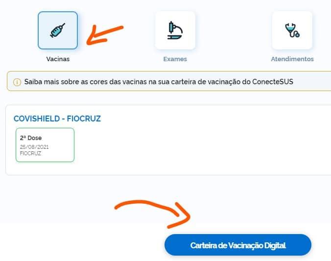 Certificado Vacinação Covid-19 - Conectsus