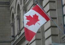 Em busca de Tulipas, um bate volta a Ottawa