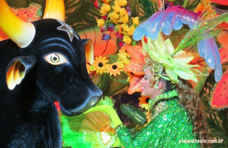 Festival Folclórico de Parintins informações básicas para você assistir a esta grande festa | Viajante Solo