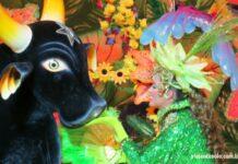 Festival Folclórico de Parintins informações básicas para você assistir a esta grande festa   Viajante Solo