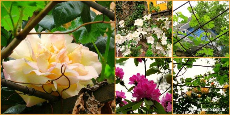 La Chascona Flores | Viajante Solo