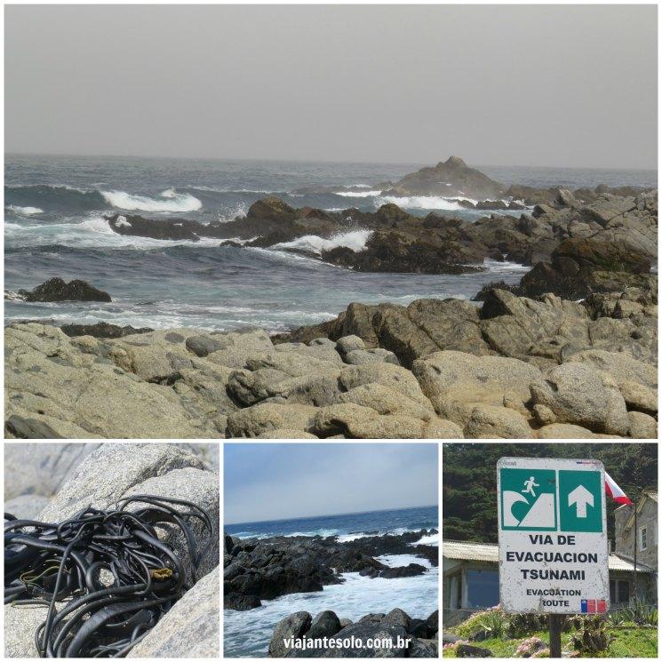 Praia Isla Negra Colagem | Viajante Solo