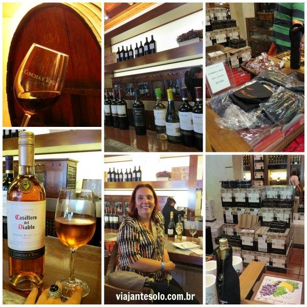Viña Concha Y Toro Bar e Wine Store | Viajante Solo