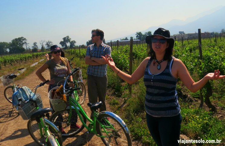 Viña Cousiño Macul Primeira Parada com vista para a Cordilheira | Viajante Solo