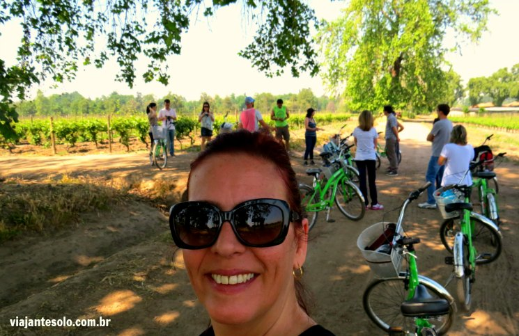 Viña Cousiño Macul Segunda Parada | Viajante Solo