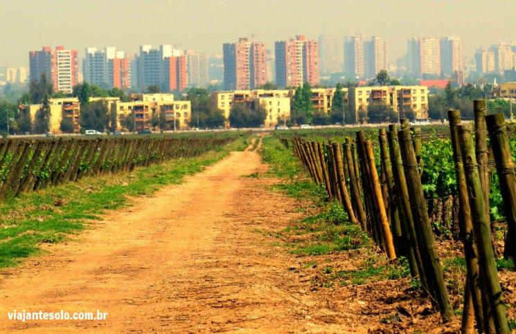 Viña Cousiño Macul vista cidade | Viajante Solo
